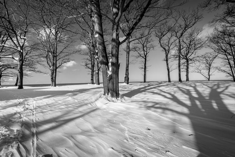 Winter scenes-2.jpg
