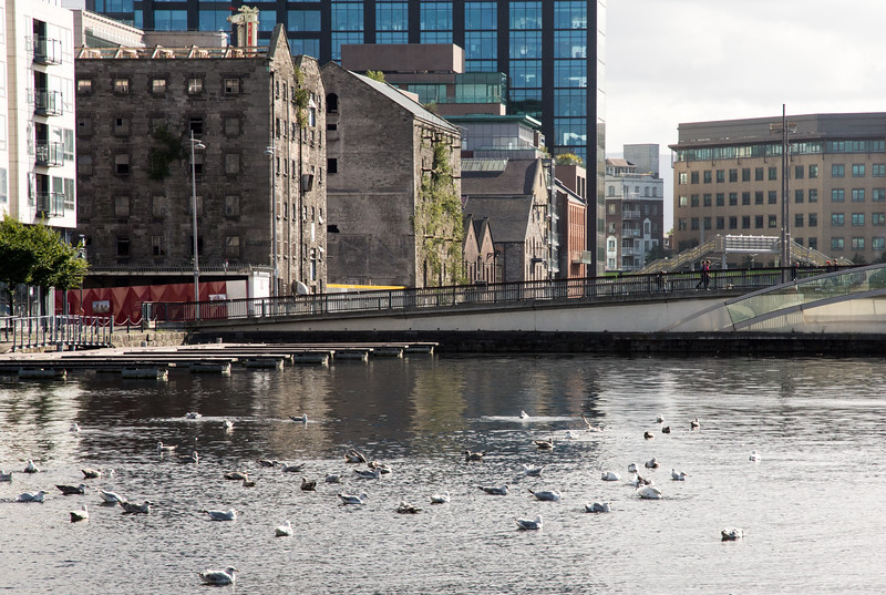 Grand Canal Dock in Dublin Docklands