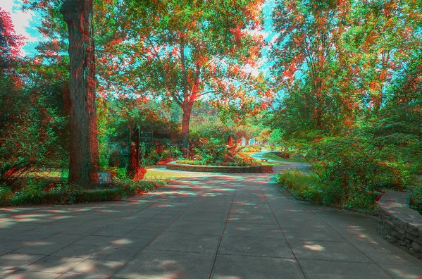 Birmingham Botanical Gardens 6/21/20