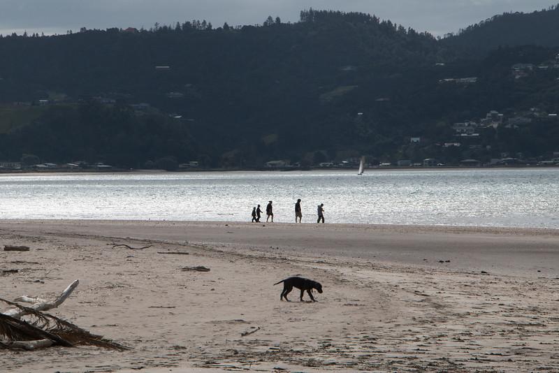 Whitianga beachcombers 5779