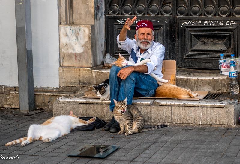Cat man Istanbul.jpg