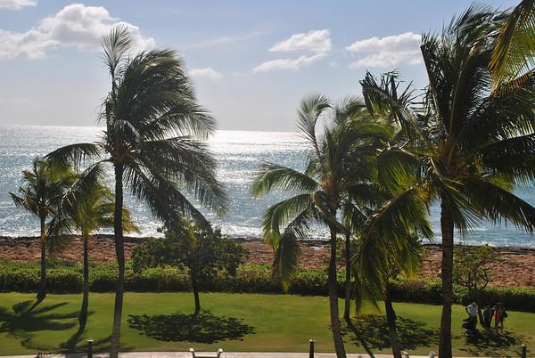 Donas Hawaii Pics