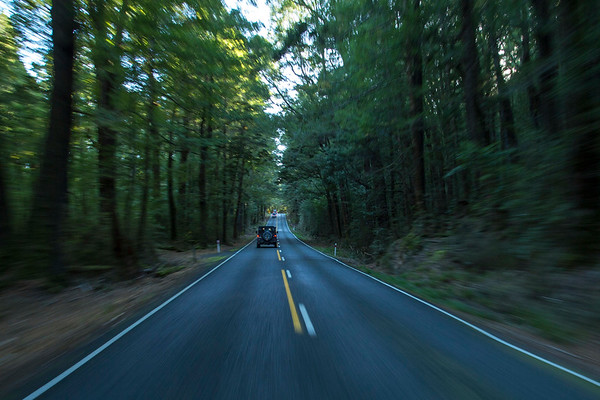 20170403 En Route to Milford Sound _JM_9207 a.jpg