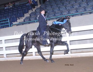 CLASS 6  LITE SHOD AMATEUR OWNED & TRAINED SPEC