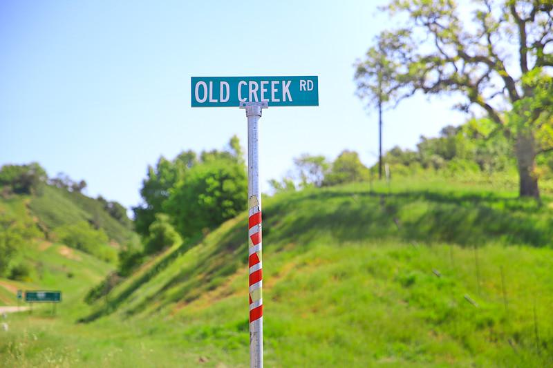 websize_Old Creek Road in Spring-0850.jpg