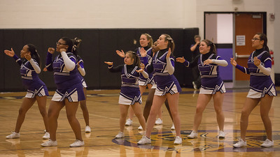 Cheerleading 2012-2013