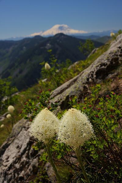 Granite Mt. July 2010 16.JPG
