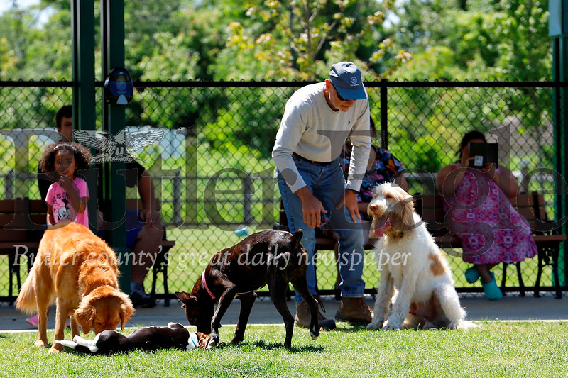 Alan Offstein of Butler works with his dog Guapo while other dogs play at the Alemeda Park dog Park Tuesday. Seb Foltz/Butler Eagle