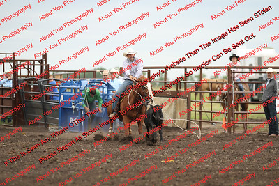 Towner NDRA Rodeo