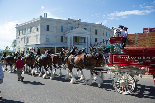 Budweiser Clydesdale horses Petoskey Michigan