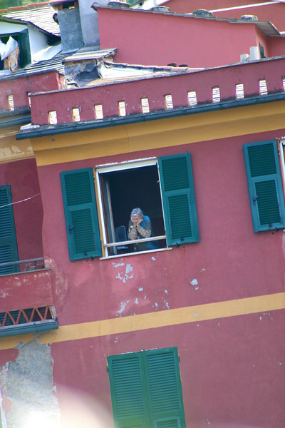 Vernazza resident watching the action.jpg