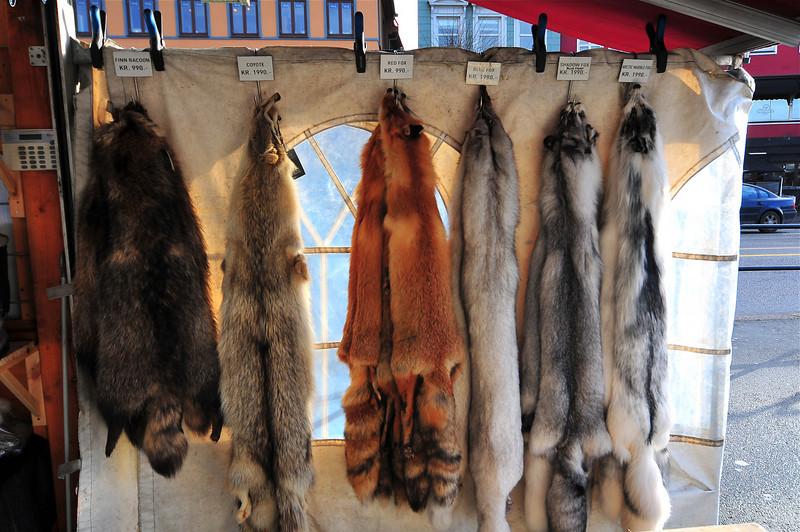 Skinn av ulike typar og dyr på torget..30.01.2011