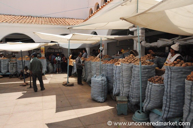 Potato Courtyard - Sucre, Bolivia