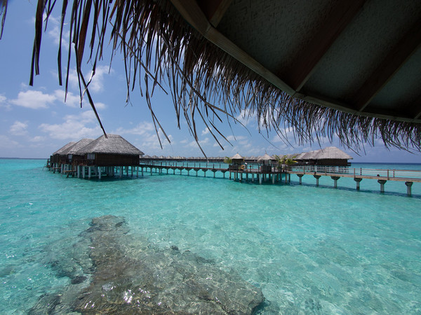 Vilu Reef 2014
