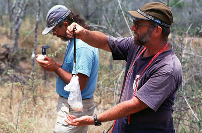 Terrestrial Research      & Conservation