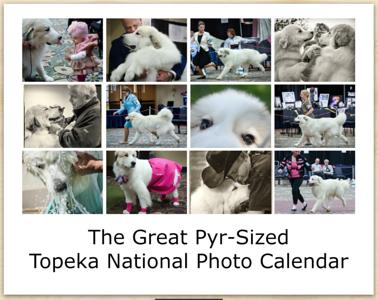2015 National Calendar Photos Plus Bonus Photos