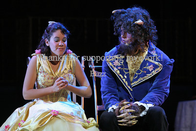 Beauty and the Beast 2008
