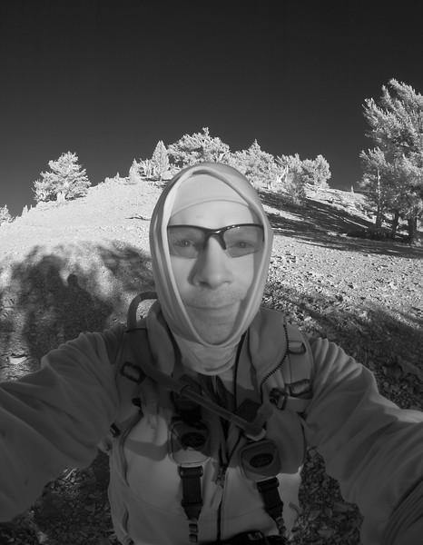 Tour de SoCal: White Mountains and Patriarch Grove Nov 2007