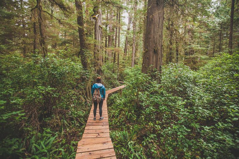 Pacific Rim National Park - Tofino - Vancouver Island - British Columbia