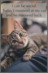 A Sense of Humor is Required ~ #wanderingnursewhitlock memes