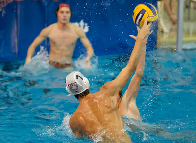 Tiger Water Polo Tiger Classic 2016