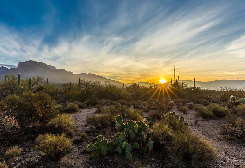 Sabino Sunrise 2-18-2018a-.jpg