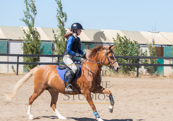 Rider 81