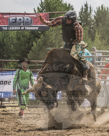 Elite Professional Bullriders - Donnelly