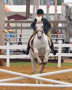 Four Town Fair Horse Show 2017