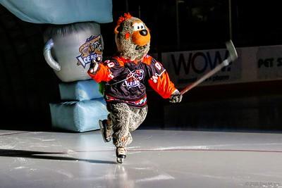 Knoxville Ice Bears Hockey