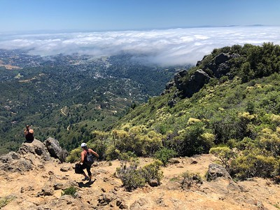 Mt. Tam, Lagunitas-East Peak Ridge Trails: Jun 19, 2019