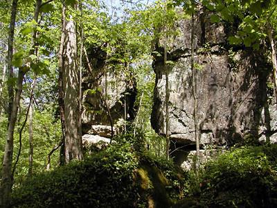 Savage Rock Garden 5 Caryville TN 4/28/07