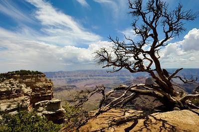Canyonlands 2011