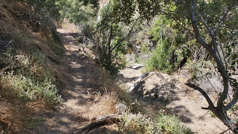 USAC,  Left is a billy-goat trail go-around for the right's steep descent and rock drop