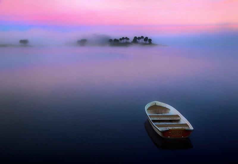 Nikon Lens-.jpg