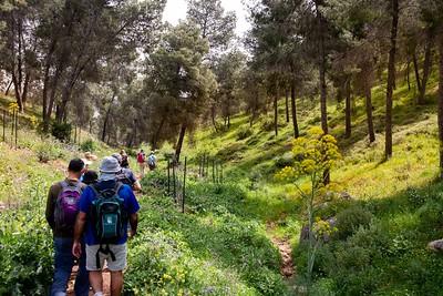 Ziknei Tzion Nahal Yitzpor Gilboa - Selected