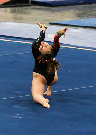 2015 Ozone Invitational Collegiate Gymnastics