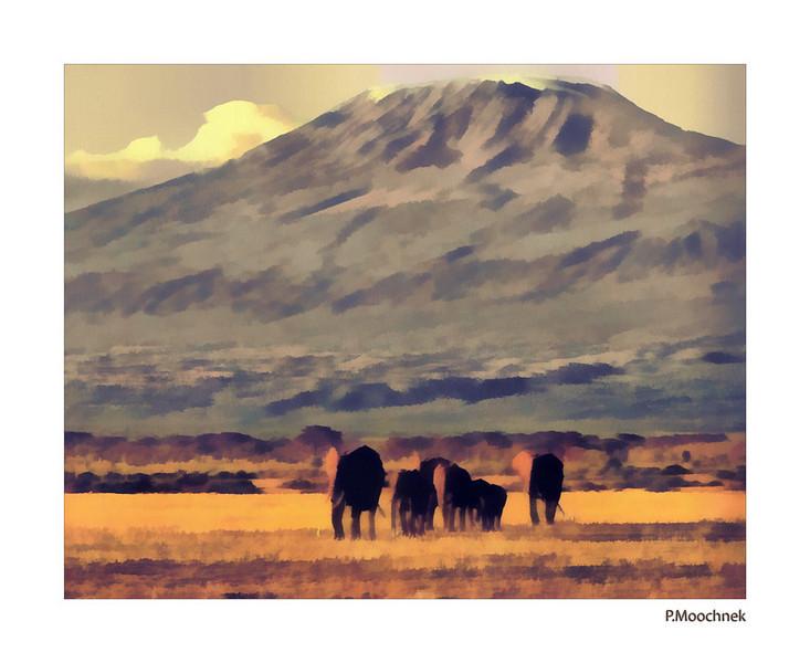Elephants Of Kilamanjaro