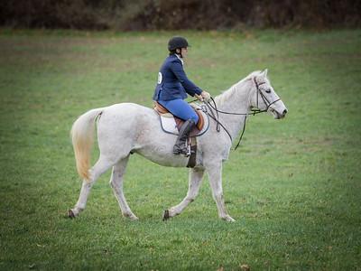 Tanheath Hunter Trials 11/15/2020
