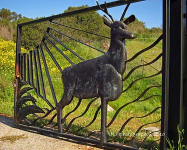 Arroyo Pescadero Park,
