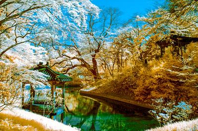Color IR Photos (Korea)