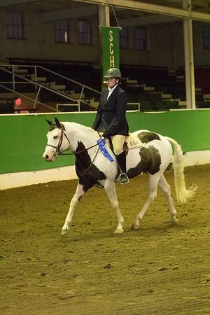 70 - KSHA Approved Adult Walk/Trot Hunt/Saddle Seat Equitation 19 & over