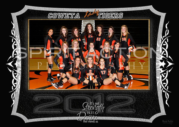CHS VARSITY Volleyball Team