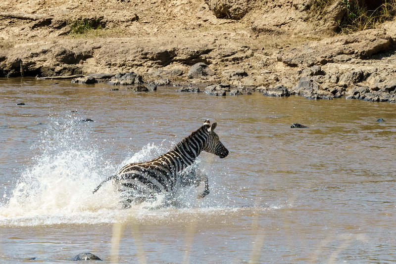 Kenya 2015-03714.jpg