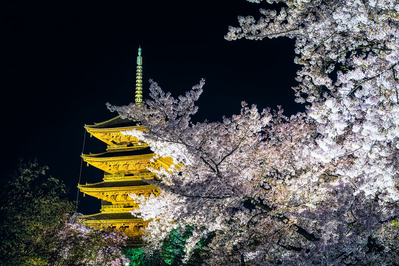 Night Photography Of The To-Ji Temple Of Japan