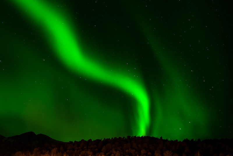 Northern lights in Tysfjord