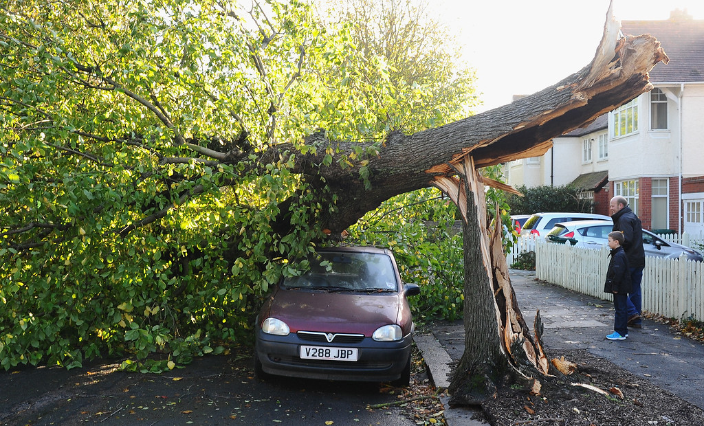 . A tree blocks the road after an overnight storm on October 28, 2013 in Hove, United Kingdom. Approximately 220,000 homes are without power and two deaths have been recorded after much of southern England has been affected by a severe storm. Transport links on road, rail, air and sea have been severely disrupted by hurricane-force winds that have almost reached 100 mph in places.  (Photo by Mike Hewitt/Getty Images)