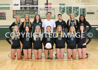 VARSITY VOLLEYBALL TEAM PICS