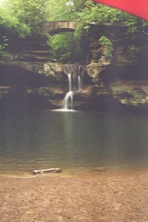 2004 scans