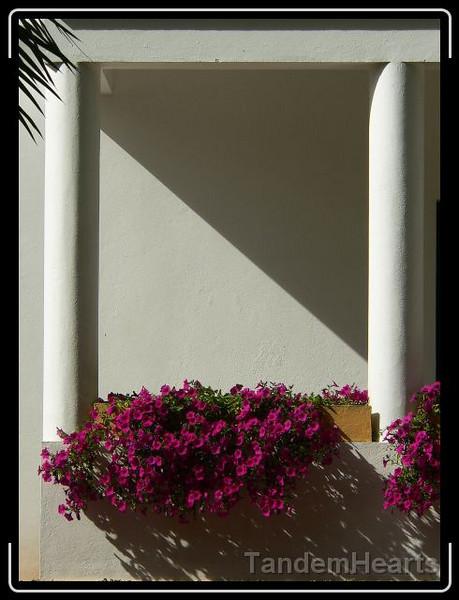 day-3-hotel-shadows.jpg